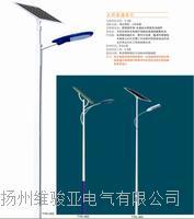 太陽能燈具 TYNDJ004
