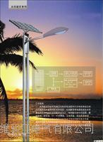 太陽能路燈 TYN-001