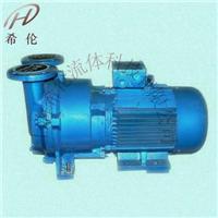 水环式真空泵 2BV