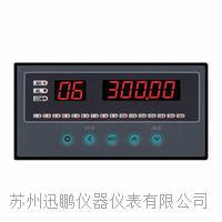 苏州迅鹏WPLE-C型八路温度巡检仪 WPLE