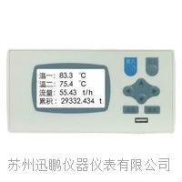 苏州迅鹏WPDC多回路测量显示仪 WPDC