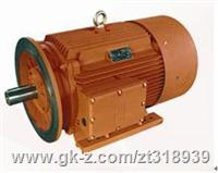 大連電機廠MD2E高效節能電機