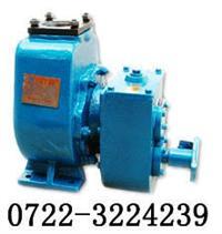 带增速箱50ZY-ZD-25油泵