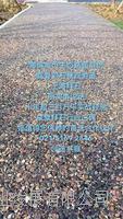 供应兰州12公分透水混凝土价格/透水地坪胶结料 BES-05