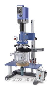 IKA反应釜 2L实验室反应器 LR-2.ST 配置 3