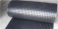 深圳排水板 HW-PED20