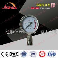 耐温压力表 Y-100B