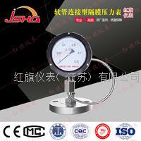 软管连接型隔膜压力表 YTP-60/100/150/