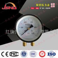 YZS102双针压力表