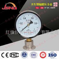 卡箍式卫生型隔膜压力表 YTP-60/100/150