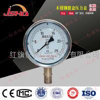 不锈钢膜盒压力表 YE-100B/YE-150B