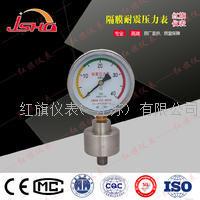 耐震隔膜压力表 YNTP-60/100/150
