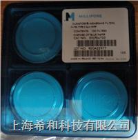GVWP01300,聚偏二氟乙烯,0.22um,孔徑,13mm直徑 GVWP01300
