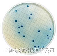 不含玫红酸的 m-FC 培养基(脱水) MB000000F