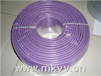 """厂家直销优质""""Profibus DP总线电缆6XV1830-OEH10"""" 厂家直销优质""""Profibus DP总线电缆6XV1830-OEH10"""""""
