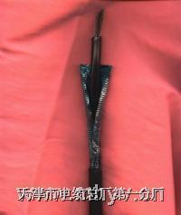 20对阻燃钢铠市话电缆HYA53-20×2×0.9 20对阻燃钢铠市话电缆HYA53-20×2×0.9