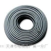 WDNH-RYYS电缆实物图 WDNH-RYYS电缆实物图