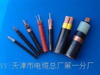MHYAV50*2*0.6电缆结构图 MHYAV50*2*0.6电缆结构图
