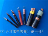 MHYAV50*2*0.7电缆全铜包检测 MHYAV50*2*0.7电缆全铜包检测