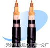 MKVV电缆-矿用控制电缆MKVV-天津市电缆总厂一分厂- MKVV电缆;矿用控制电缆MKVV