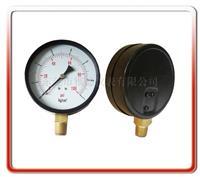 100MM径向气压表 100QL-PA01