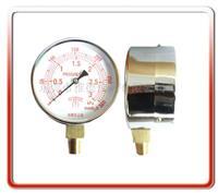 100MM径向微压表 WYE100-YL01