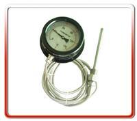 100MM径向软管连接温度计(03)   WTZ/WTQ-280-03