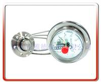 软管连接法兰式隔膜电接点压力表 YTP100-RLX001