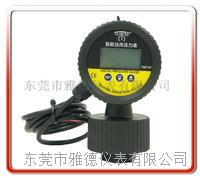 PP隔膜式数显远传压力表 YDSX-PP013