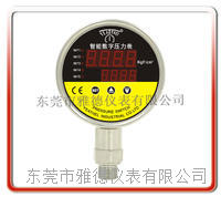 100mm径向全不锈钢智能控制数显压力表(五路控制继电器输出) YDSX-021