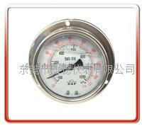 100MM轴向带边偏心全不锈钢压力表 100US-LB002
