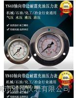 YN40轴向带边耐震压力表面板安装耐震充油压力表不锈钢充油压力表
