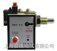 DSN-I/Z户内电磁锁 DSN-I/Z