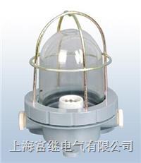CCD1-2A船用舱顶灯 CCD1-2A