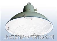 CGD2船用舱顶灯 CGD2