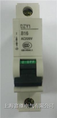 DZY1小型断路器 DZY1-10/1B
