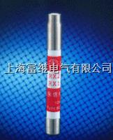 RX1A-1000报警熔斷器 RX1A-1000