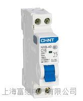 NXB-40小型断路器 NXB-40/1P