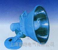 DJ-6高压水银灯 DJ-6