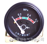 YY03004C2油压表 YY03004C2