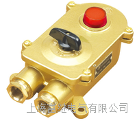 TJHSD202-1船用铜质水密带指示灯开关 TJHSD202-1
