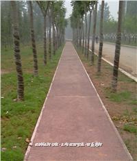 彩色透水地坪 透水防滑路面 步道铺装