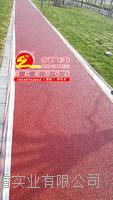 上海睿龙彩色透水混凝土用双丙聚氨酯密封剂