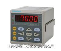 测量仪表 DS-7000