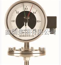 XG/YPF系列膜片式压力表 XG/YPF