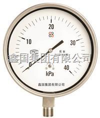 XG/YE-100B不锈钢膜盒压力表 YE-100B