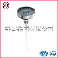 轴向型双金属温度计 WSS-401