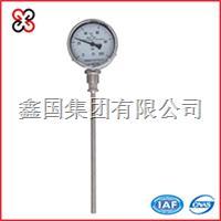 径向型双金属温度计 WSS-411