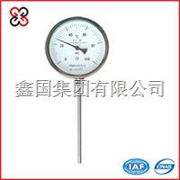 万向型双金属温度计 WSS-481