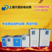 中频熔炼炉 熔钢炉 DLZ-35